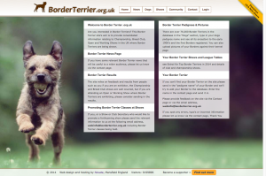 BorderTerrier.org.uk