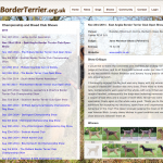 Border Terrier Dogs and Show Results Database
