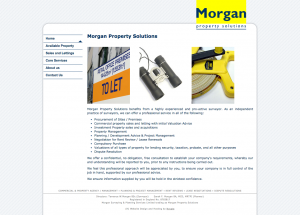 Morgan Property Consultants