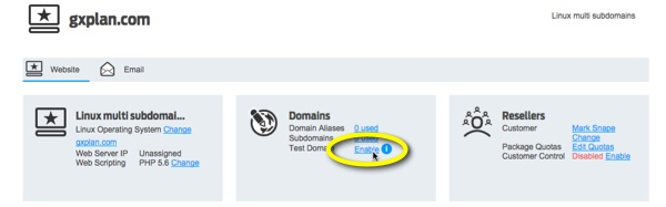 Since DNS is not yet configured, click Enable under test domain